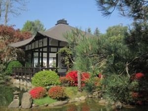 Ferch, Japanischer Bonsaigarten (Tilo Gragert)